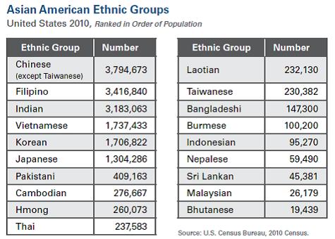 south asian affairs